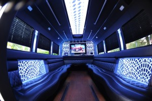 Platinum-3-Party-Bus-Interior-TV